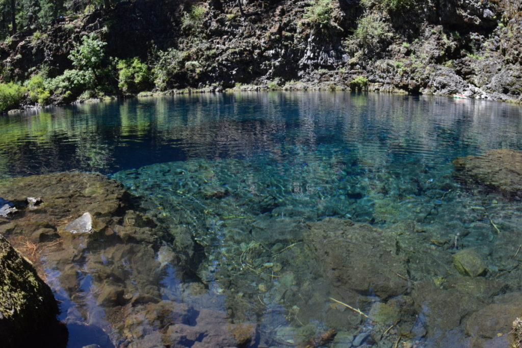 tamolitch blue pool. Hike The Tamolitch Blue Pool On McKenzie River Trail - Hiking Trails And Waterfalls In Oregon
