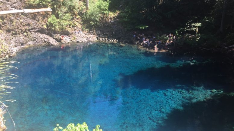 Oregonu0027s Tamolitch Blue Pool Hike: How To Get There