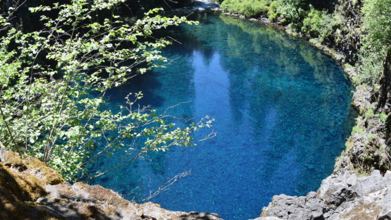 Tamolitch Blue Pool in the McKenzie River wildernerness in Central Oregon near Bend, Oregon